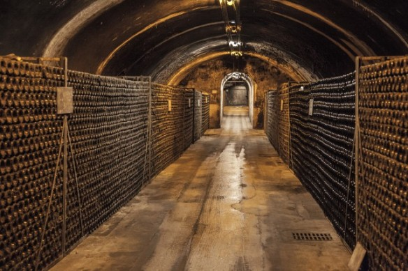 just part of what seemes like miles of Bollinger's underground cellars