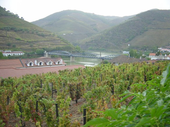 View from Quinta do Bomfim