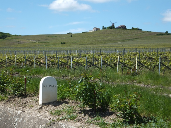 Bollinger marker near Vezernay (this stone markers designating the ownership of the vineyard are dotted throughout the countryside)
