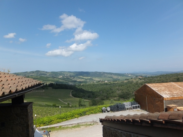 looking out at the vineyards from the Querciabella winery