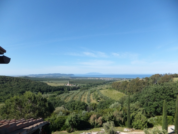 the view from our room at Poggio ai Santi