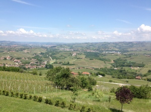 view from Bovio