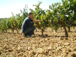 Alsono del Yerro winemaker Lionel Gourgue