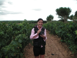 Pilar in the vineyards