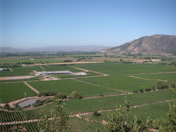 view of the Montes winery and vineyards from the mirador