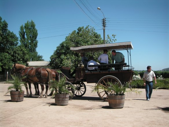 we're off to tour the vineyards by horse drawn carriage