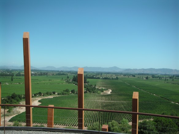 the view from the Casa Lopostole winery