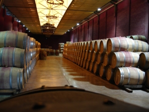 Viu Manent's barrel room