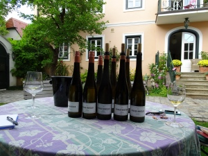 the white wines we tasted at Pichler-Krutzler