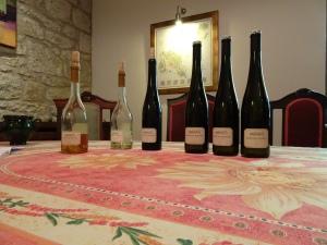 our tasting at Demeter Zoltán Pincészet