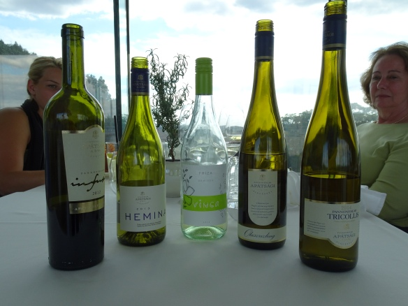 the wines of Pannonhalma Abbey Winery (Apátsági Pincészet) that we tasted during our lunch at Viator
